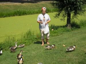 В Амстердаме много людей выходят погреться на лужайки, при этом удивительно то что там утки и даже лебеди подходят близко и их можно покормить.